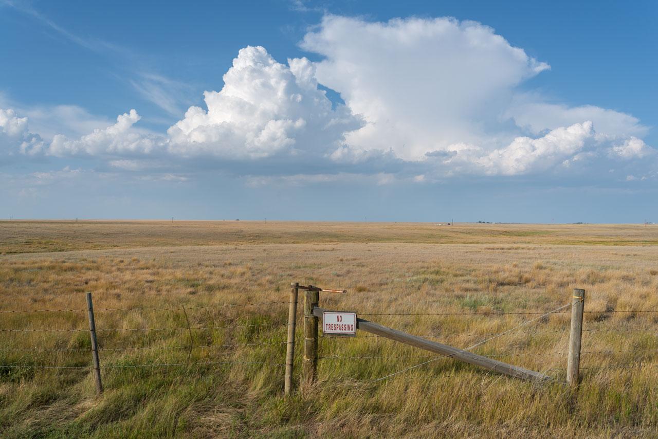 Die Prärie Albertas