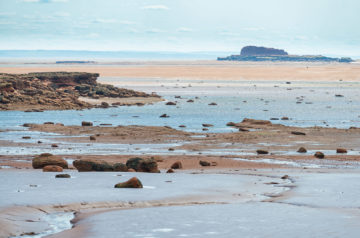 Beeineindruckende Aussicht auf die Bay of Fundy bei Ebbe - Thomas Cove Costal Reserve, Nova Scotia, Kanada