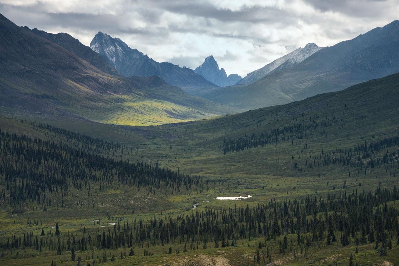 Ausblick in den Tombstone Territorial Park am Dempster Highway im Yukon, Kanada.