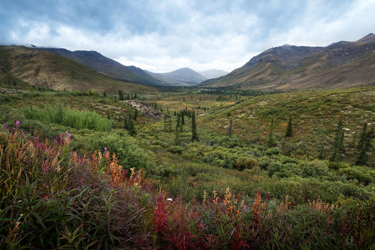 Schöne Aussichten im TombstoneTerritorial Park, Yukon, Dempster Highway, Kanada